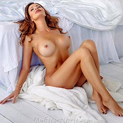 Meloni Escort leisure hooker Berlin for French kisses with sympathy and flirting 24 hours