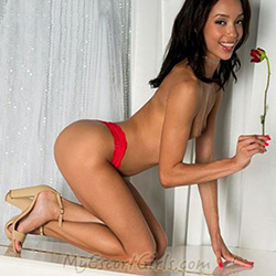 Halley escort company Leverkusen to the truck, car with escort service 24 hours make an appointment